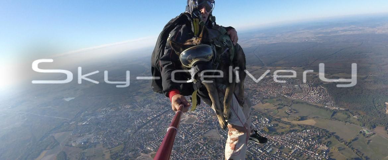 Parachutisme maître chien Cyno Bundle